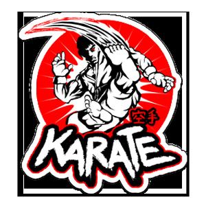 Karate Fighter Sticker