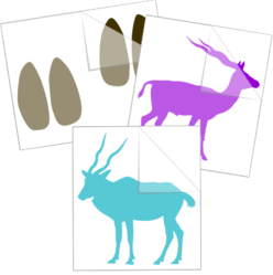 Antelope Car Stickers and Decals