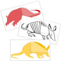 Armadillo Car Stickers and Decals
