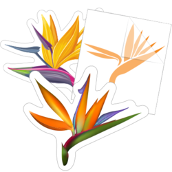 Bird of Paradise Flower Car Stickers and Decals