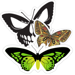 Butterfly Car Stickers and Decals