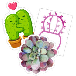Succulent Cactus Car Stickers and Decals