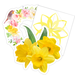 Daffodil Flower Car Stickers and Decals