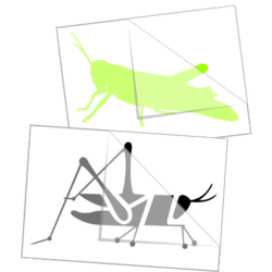 Grasshopper Car Stickers and Decals