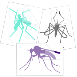 Mosquito Car Stickers and Decals