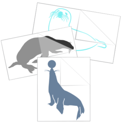 Seal & Sea Lion Car Stickers and Decals