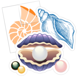 Seashell Stickers and Decals