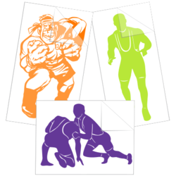 Wrestling Car Stickers and Decals