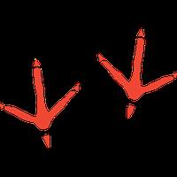 Bird Footprint Car Stickers and Decals