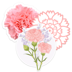 Carnation Flower Car Stickers and Decals