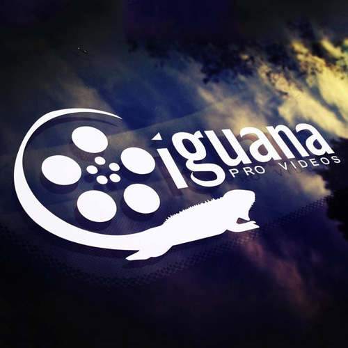 Iguana Video Custom Cut-Out Stickers