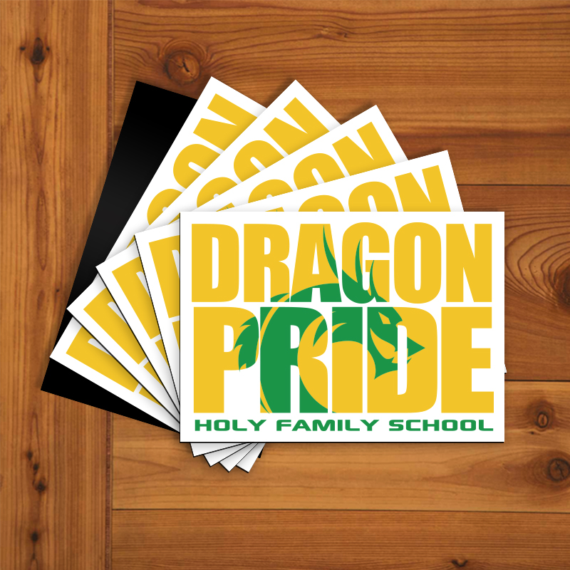 Dragon Pride Rectangle Magnets