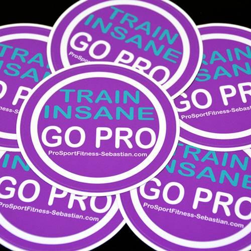 Pro Sport Fitness Circle Stickers