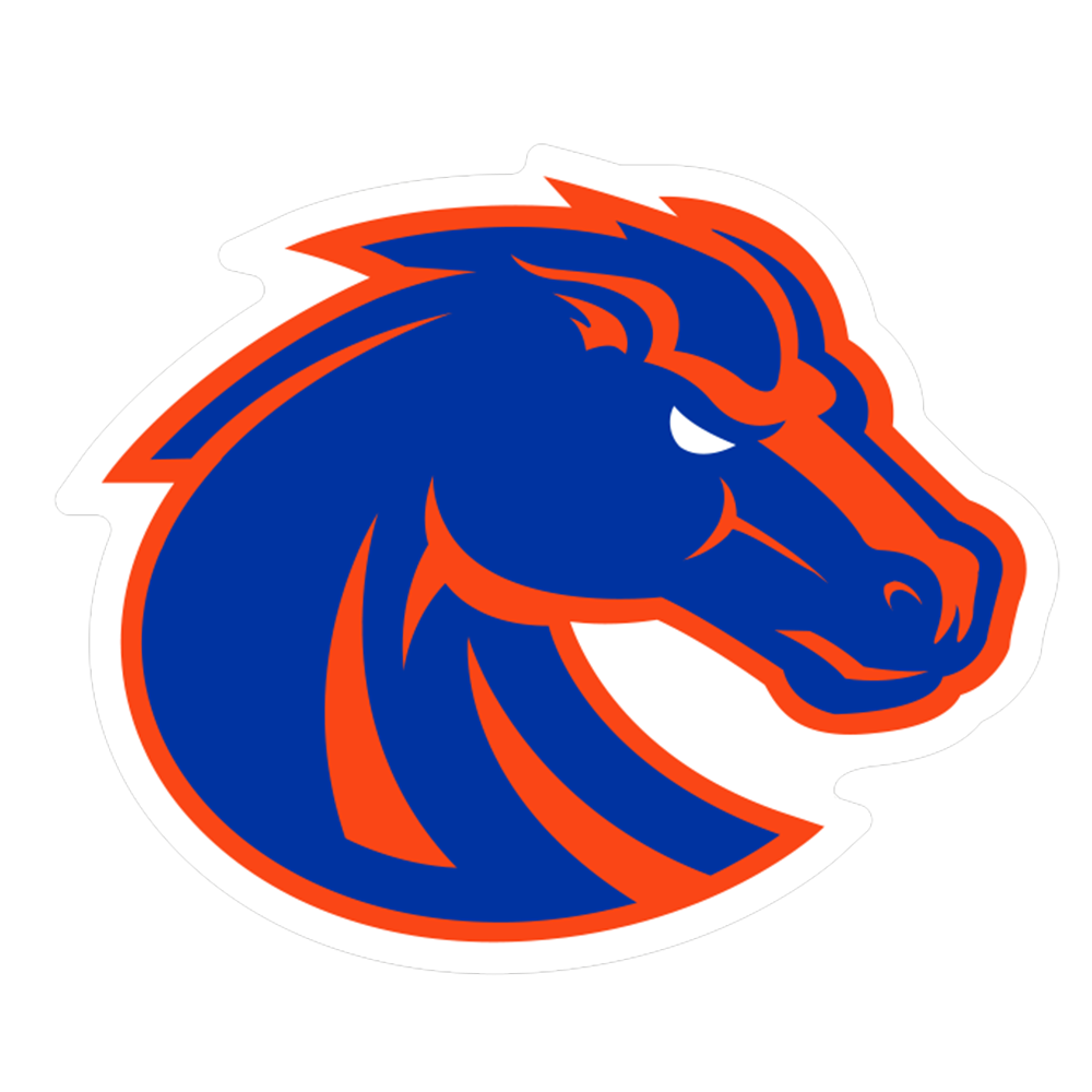 Boise State Broncos NCAA Logo Sticker