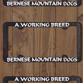 Bernese Dogs Frame