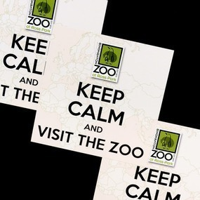 Binghamton Zoo Custom Square Stickers