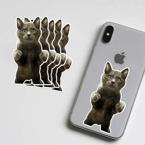 Cat Phone Photo Sticker