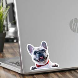Laptop Dog Photo Sticker