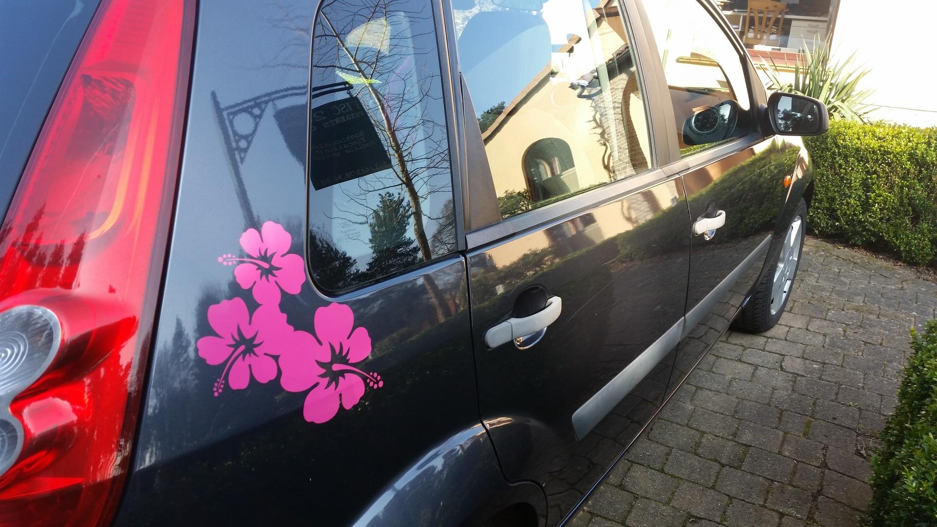 Yani's photograph of their Three Lovely Hibiscus Flowers Corner Sticker