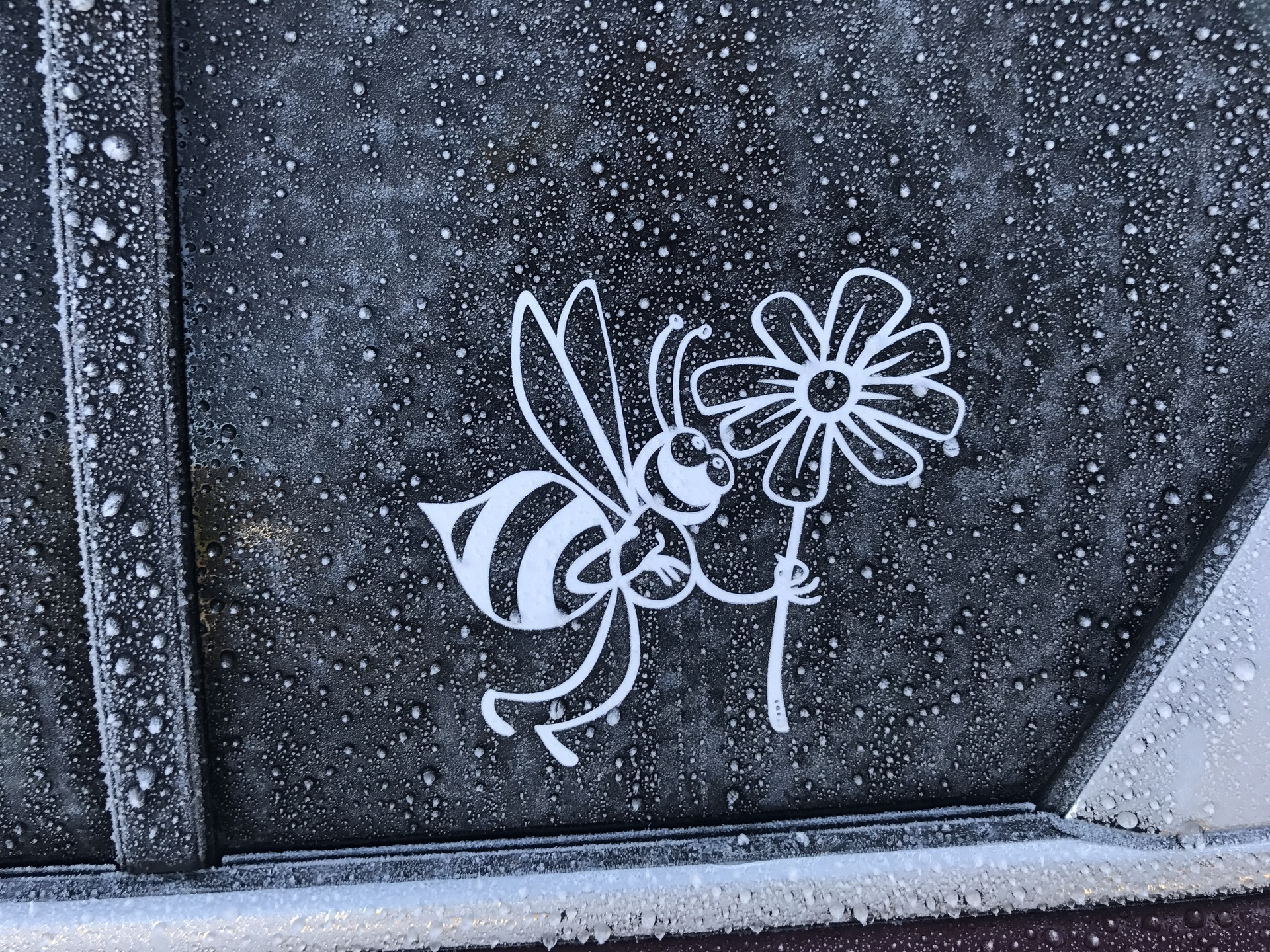 Kimberly's photograph of their Bee And Daisy Flower Sticker