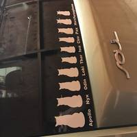 Judy's review of Cat Family Stickers and Decals