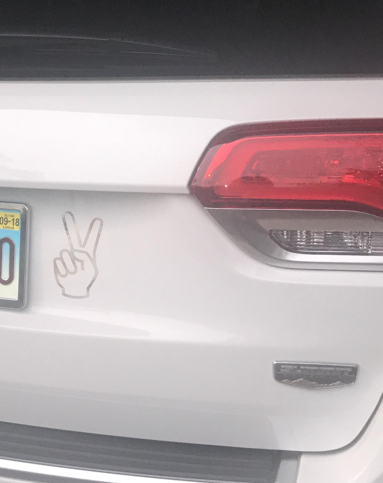 Jennifer's photograph of their Peace Sign Sticker