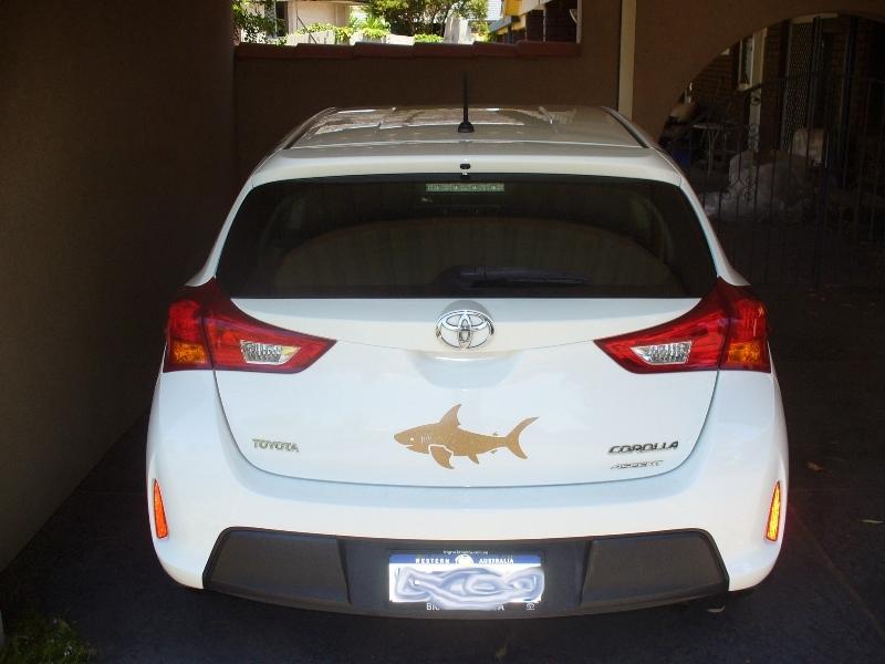 Stephanie's photograph of their Big Shark Sticker