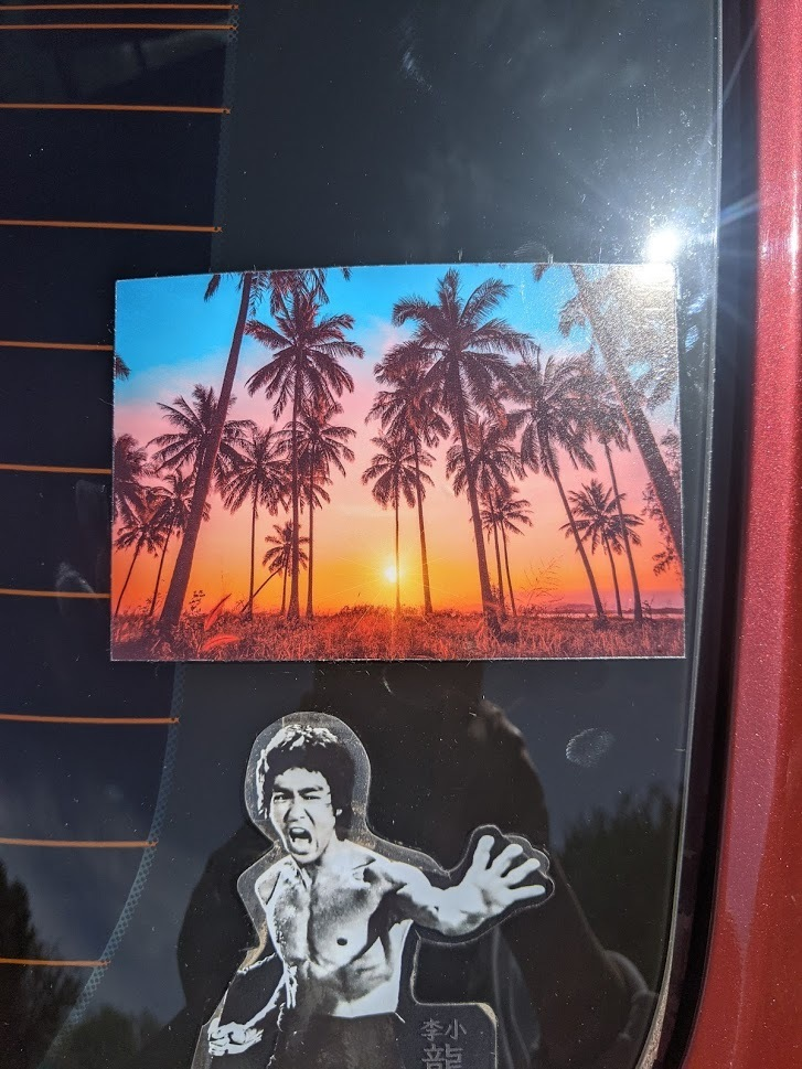 Elaine's photograph of their Palm Trees At Sunset Sticker