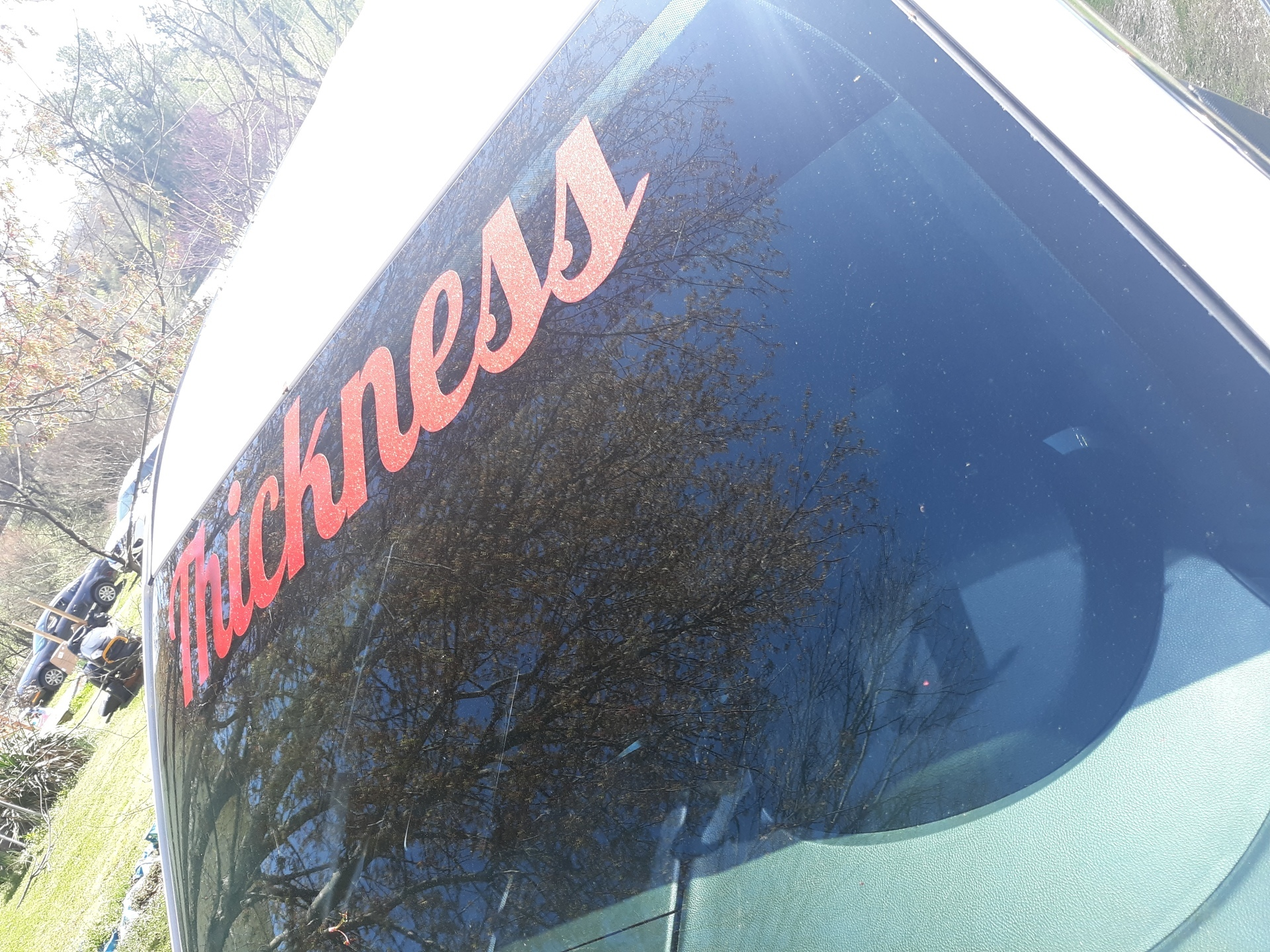Taneshea's photograph of their Vinyl Lettering