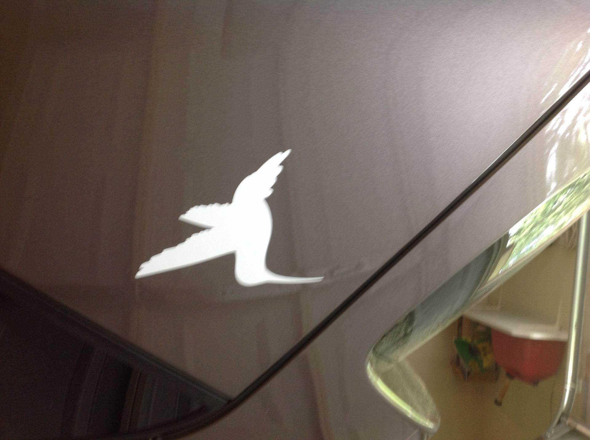Heather's photograph of their Hummingbird Silhouette Sticker