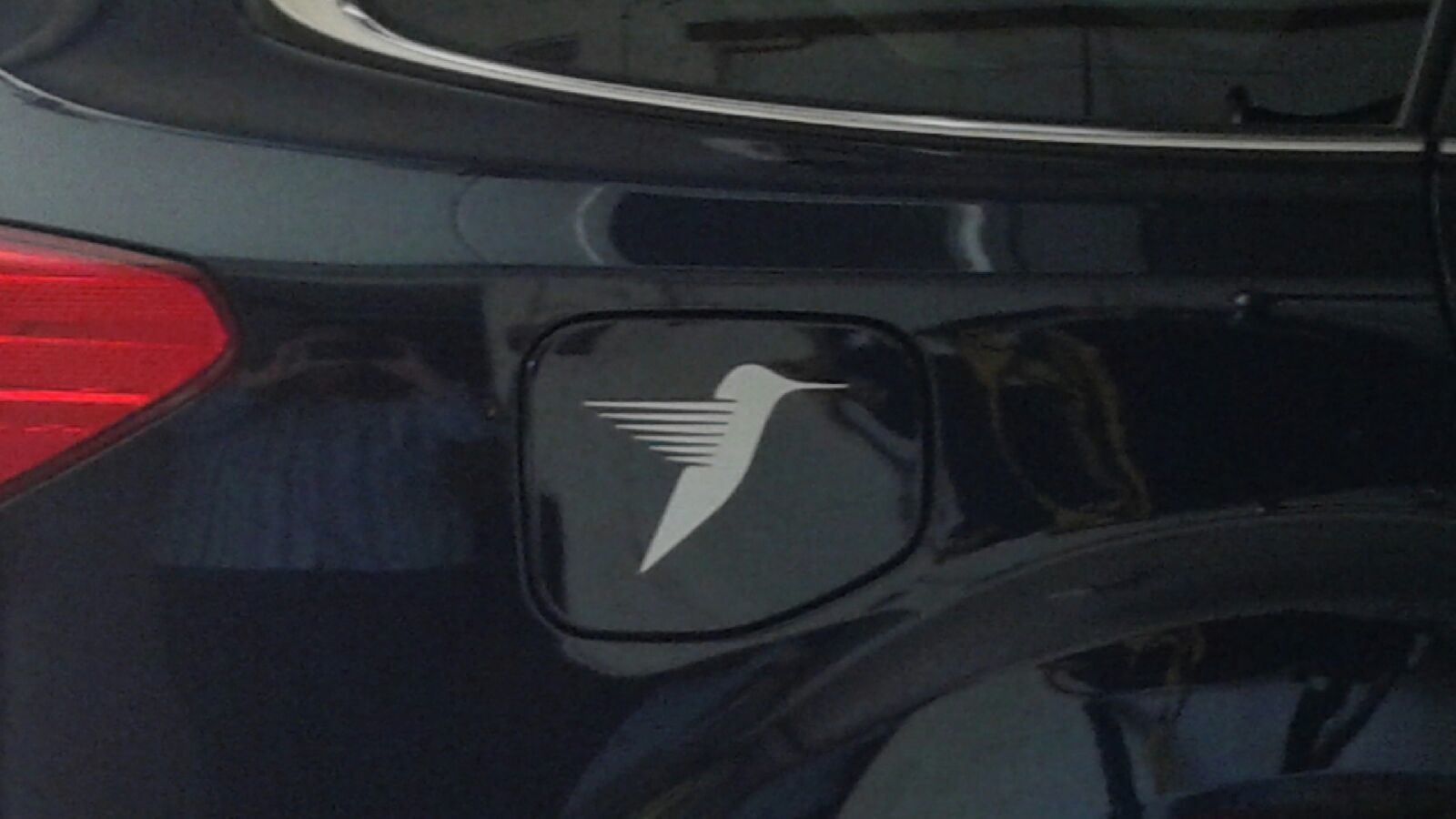Anne's photograph of their Abstract Hummingbird Sticker