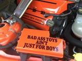 Diane's review of Bad Ass Toys Aint Just For Boys Sticker