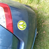 Larry's review of Green Peace Sign Drawing Sticker
