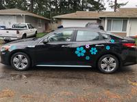 Margaret's review of Daisy Flower Pedals Sticker