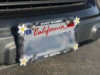 Rebecca's review of Custom Daisy Chrome License Plate Frame