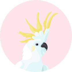 2d Portrait Of Cockatoo On The Pink Background Sticker