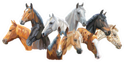 Set Of Colorful Portraits Of Horses Breeds Sticker