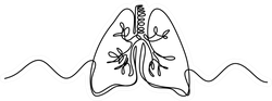 Single Continuous Line Art Of Lungs Human Organ Sticker