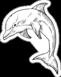 A Bottlenose Dolphin. Hand Drawn Illustration Sticker