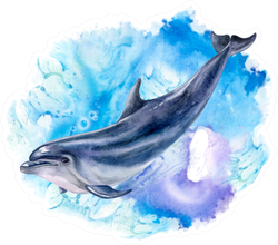 A Dolphin Realistic And Abstract Marine Watercolor Sticker