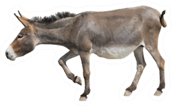 A Donkey Is Leaning Forward Sticker
