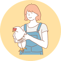 A Girl Holding A Healthy Chicken Illustration Sticker