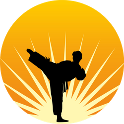 A Man Practices In Karate On A Sun Sticker