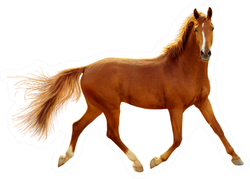 A Red Horse In Contour Light Is Trotting Freely Sticker