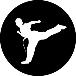 A Young Boy Practicing Karate Sticker