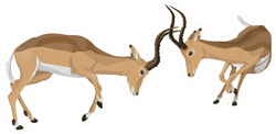 African Antelope Fighting Sticker
