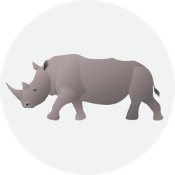 African Rhino Isolated On White Sticker
