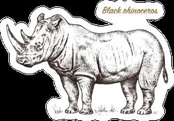 African Rhinoceros Ink Sketch Lettering Sticker