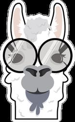 Alpaca In Glasses Meme Sticker