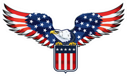 American Eagle With USA Flag Sticker